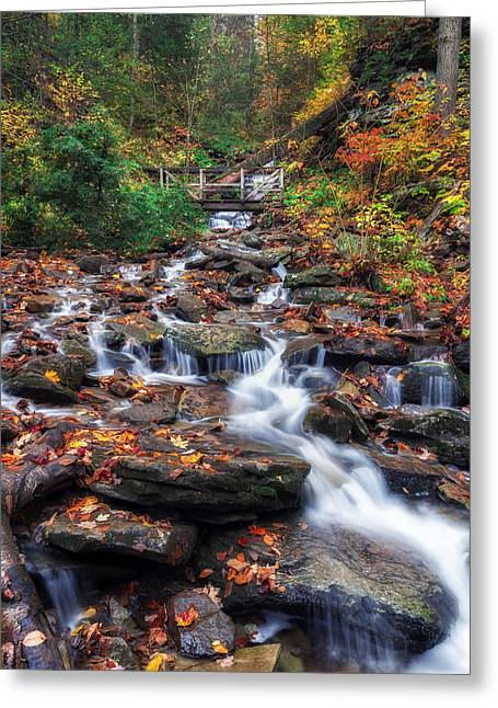 Water Flowing Greeting Cards - Up the Creek Greeting Card by Mark Papke