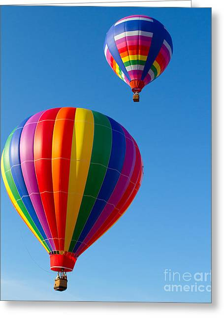 A New Focus Photography Greeting Cards - Up Up and Away  Greeting Card by A New Focus Photography