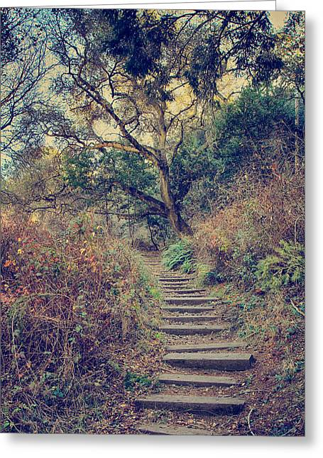 Walking Paths Greeting Cards - Up We Go Greeting Card by Laurie Search