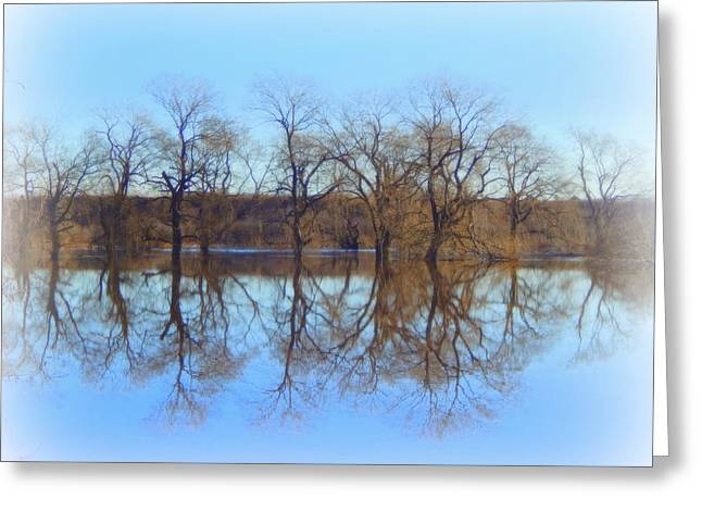 Reflections Of Trees In River Greeting Cards - Upon Reflection Greeting Card by Karen Cook