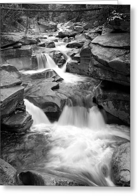 Upper Ammonoosuc Falls Black And White Greeting Card by Brett Pelletier