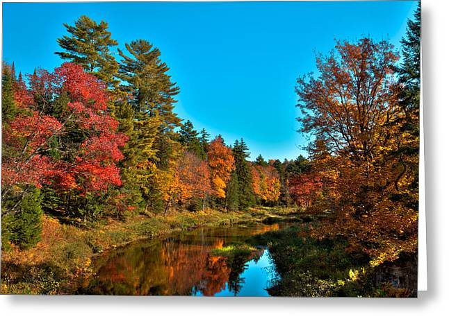 Reflections In River Greeting Cards - Upper Branch of the Moose River in Autumn Greeting Card by David Patterson