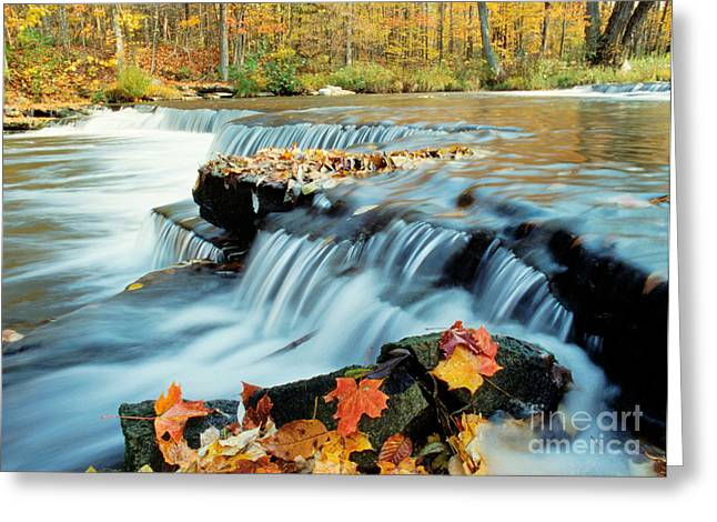 Upper Chittenango Falls Greeting Card by Oscar Gutierrez