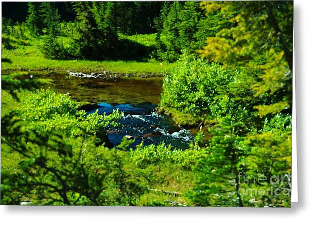 Upper Dewey Creek Greeting Card by Jeff  Swan