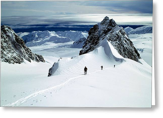Mountain Greeting Cards - Upper Fox Glacier Westland Np New Greeting Card by Panoramic Images