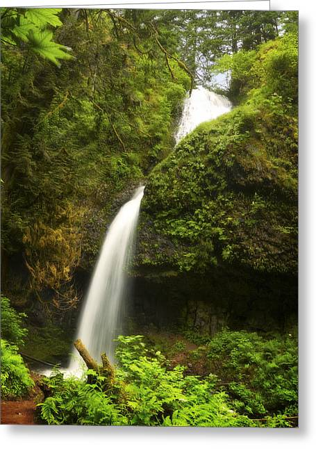 Upper Latourell Greeting Card by Jon Ares