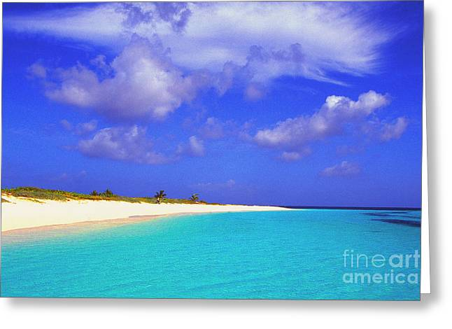 Upper Shoal Bay Greeting Card by Thomas R Fletcher