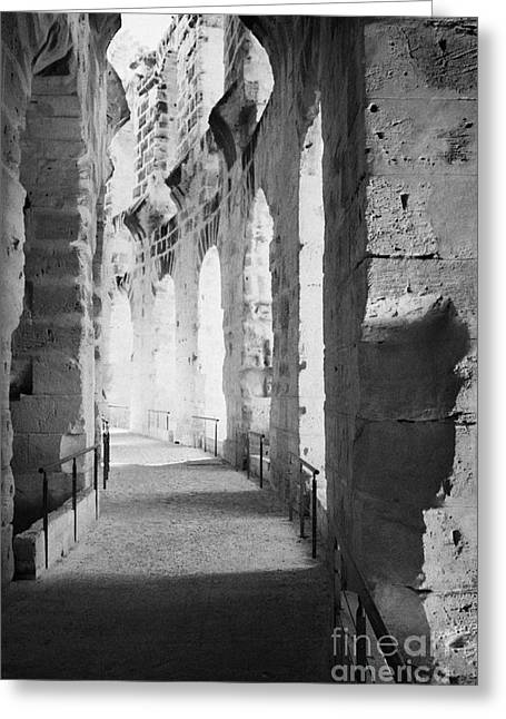 African Heritage Greeting Cards - Upper Walkway With Arches Of The Old Roman Colloseum At El Jem Tunisia Greeting Card by Joe Fox