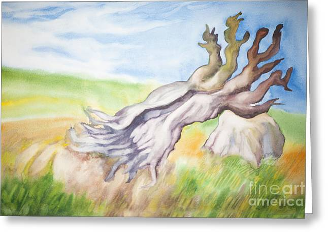 Uproot Greeting Cards - Uprooted lonely summer tree Greeting Card by Tsanko Petrov