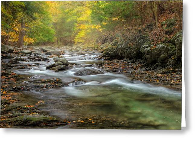 Ethereal Waterfalls Greeting Cards - Upstream Fog Greeting Card by Bill  Wakeley