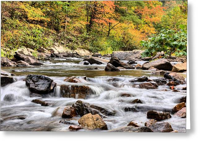 Fishing Creek Greeting Cards - Upstream Greeting Card by JC Findley