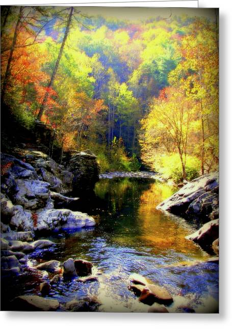 Smokey Mountains Greeting Cards - Upstream Greeting Card by Karen Wiles