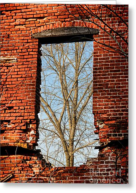 Broken Windows Greeting Cards - Urban Decay Greeting Card by Olivier Le Queinec