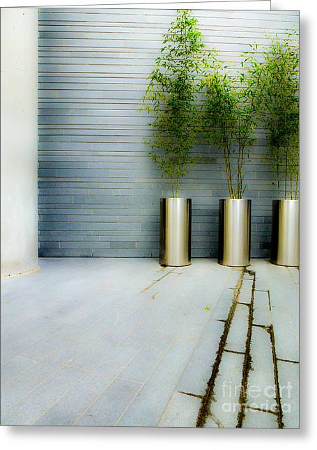 Concrete Planter Greeting Cards - Urban Planters Greeting Card by Nancy Harrison