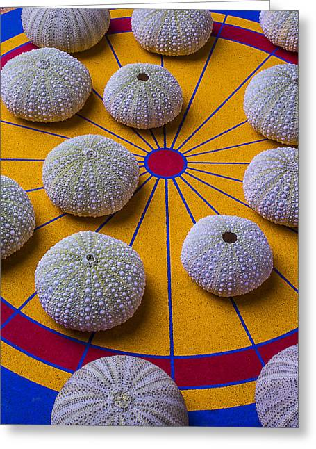 Yellow Line Photographs Greeting Cards - Urchins On Game Board Greeting Card by Garry Gay