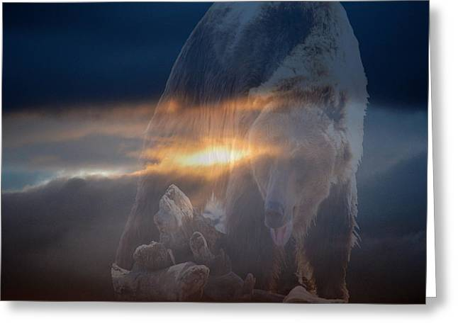 Ursa Major 2 - Great Bear Greeting Card by Kevin Bone