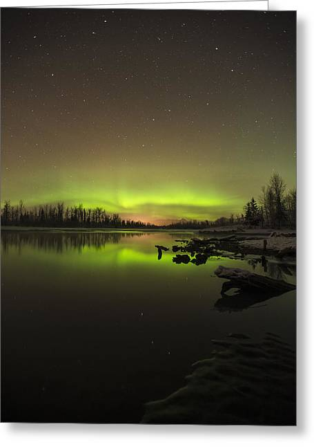 Big Chill Greeting Cards - Ursa Major Greeting Card by Ted Raynor
