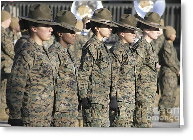 Combat Uniforms Greeting Cards - U.s. Marine Corps Female Drill Greeting Card by Stocktrek Images