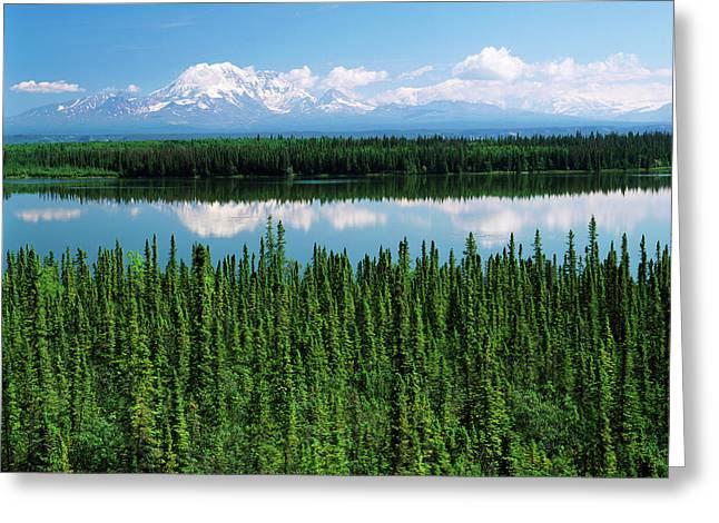 Usa, Alaska, Willow Lake And Mt Greeting Card by Adam Jones