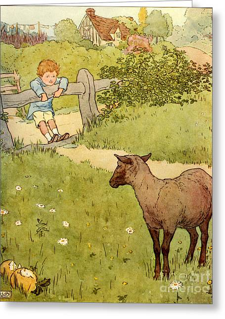 Childrens Story Book Greeting Cards - Usa Baa Baa Black Sheep  Book Plate Greeting Card by The Advertising Archives