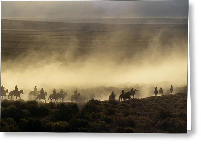 Usa, California, Bishop, Cattle Drive Greeting Card by Ann Collins