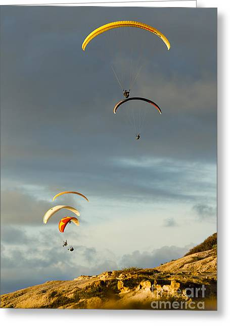 Recently Sold -  - Pastimes Greeting Cards - Paragliders Flying Over Coast Greeting Card by MakenaStockMedia