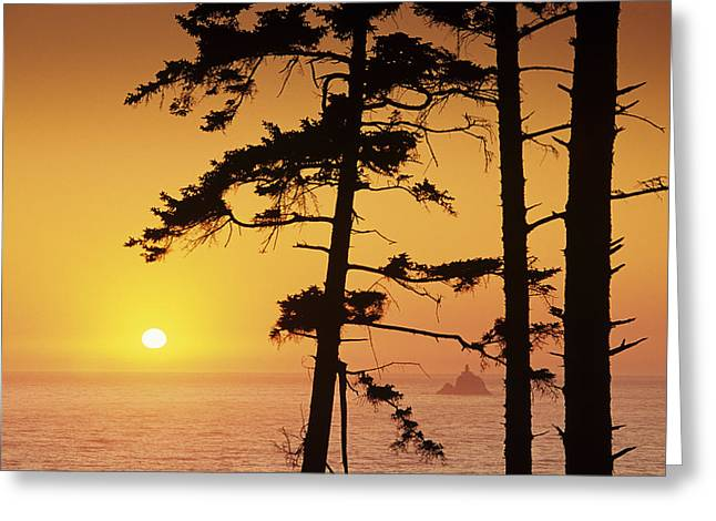 Foggy Ocean Greeting Cards - Usa, Ecola State Park Oregon, Tillamook Greeting Card by Greg Vaughn