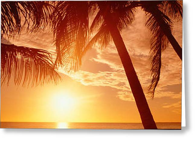 Ft. Meyers Beach Greeting Cards - Usa, Florida, Fort Meyers, Sunset Greeting Card by Panoramic Images