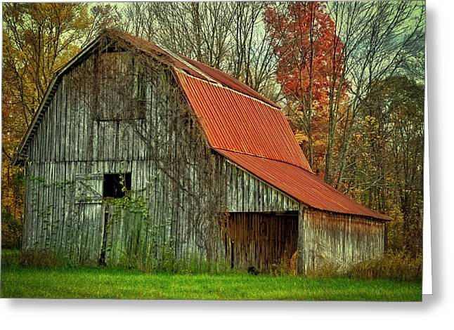 Usa, Indiana Rural Landscape Greeting Card by Rona Schwarz