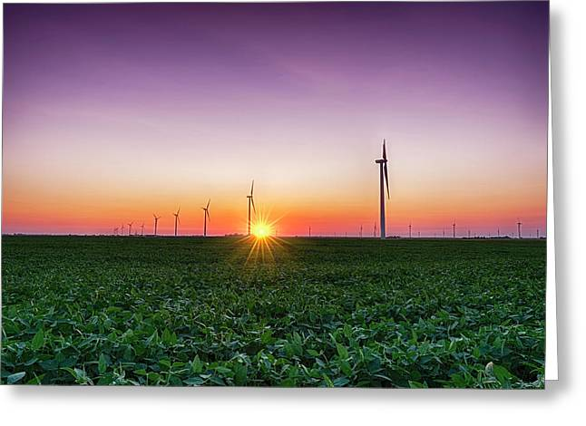 Usa, Indiana Soybean Field And Wind Greeting Card by Rona Schwarz