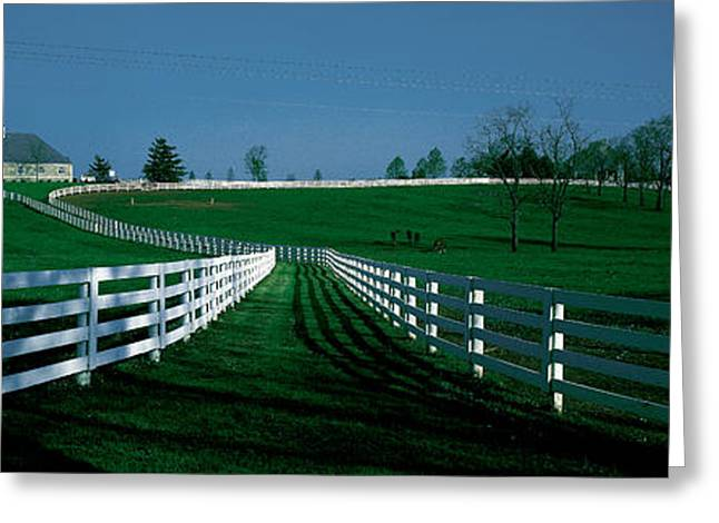Scenic Greeting Cards - Usa, Kentucky, Lexington, Horse Farm Greeting Card by Panoramic Images