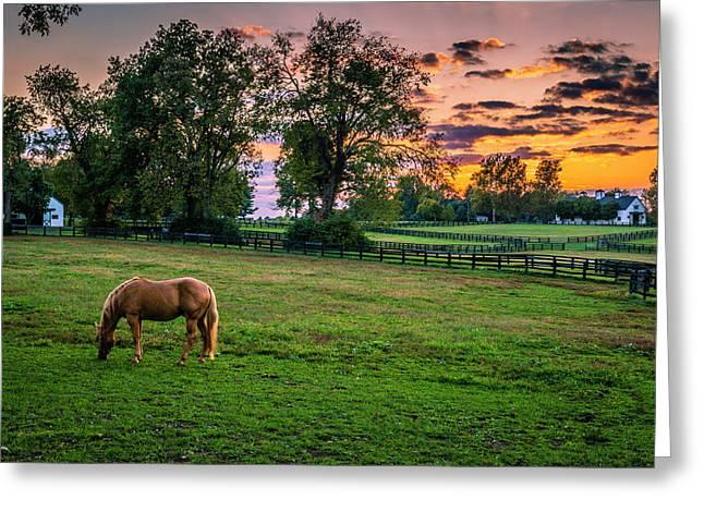 Usa, Lexington, Kentucky Greeting Card by Rona Schwarz