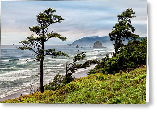 Usa, Oregon, Cannon Beach, View Greeting Card by Ann Collins