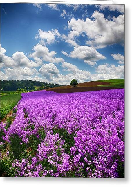 Usa, Oregon, Willamette Valley, Farming Greeting Card by Terry Eggers