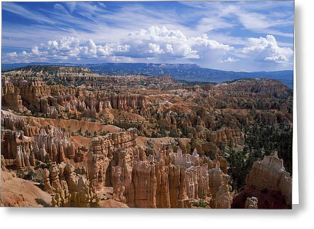 Usa, Utah, Bryce Canyon National Park Greeting Card by Tips Images