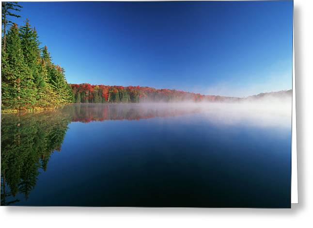 Usa, Vermont, Adams Reservoir, Woodford Greeting Card by Adam Jones