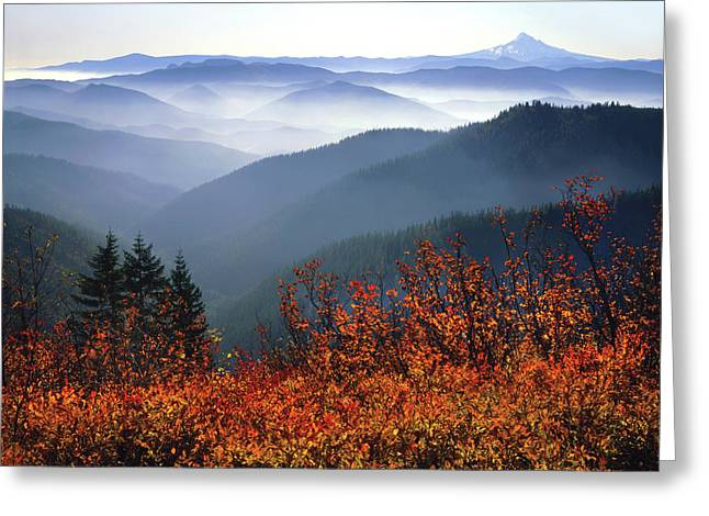 Usa, Washington, Columbia River Gorge Greeting Card by Jaynes Gallery