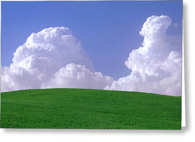 Cultivation Greeting Cards - Usa, Washington, Palouse, Wheat Greeting Card by Panoramic Images