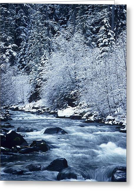 Beautiful Creek Greeting Cards - Usa, Willamette National Forest Oregon Greeting Card by Greg Vaughn