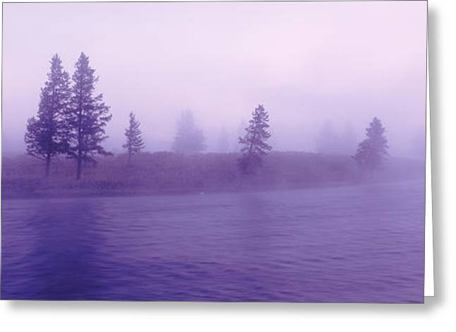 Wyoming Photography Greeting Cards - Usa, Wyoming, View Of Trees Lining Greeting Card by Panoramic Images