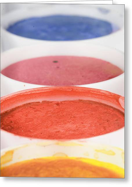 Paintbox Greeting Cards - Used watercolors Greeting Card by Modern Art Prints