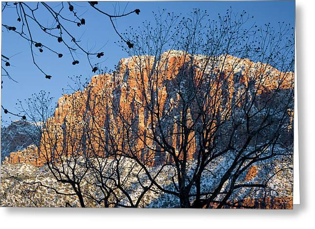 Utah Usa View Of The Watchman In Zion Greeting Card by Scott T. Smith
