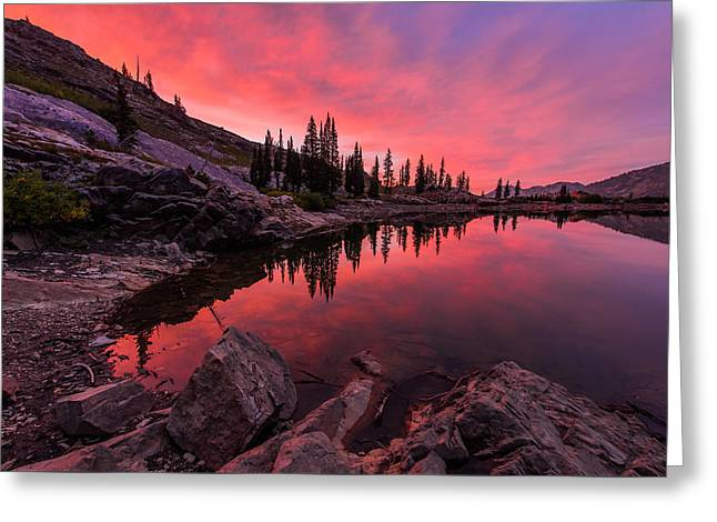 Pines Greeting Cards - Utahs Cecret Greeting Card by Chad Dutson