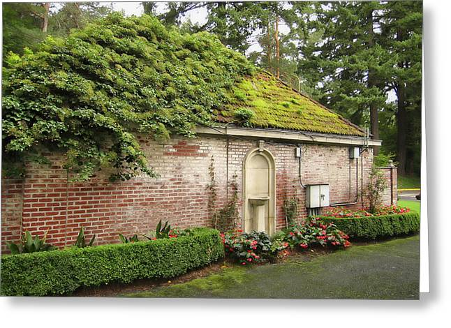 Lichen Covered Trees Greeting Cards - Utility Shed - Washington Park - Portland Greeting Card by Daniel Hagerman