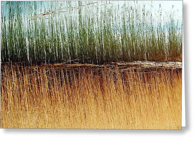 Best Selling Ocean Art Greeting Cards - V1 Greeting Card by Matthew Grice