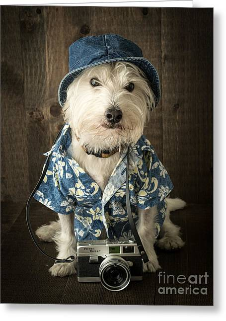 Westie Greeting Cards - Vacation Dog Greeting Card by Edward Fielding
