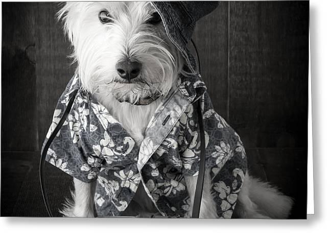 Vacation Dog with camera and Hawaiian shirt Greeting Card by Edward Fielding