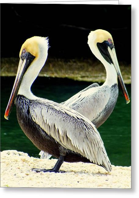Big Birds Greeting Cards - Valentine Dance Greeting Card by Karen Wiles