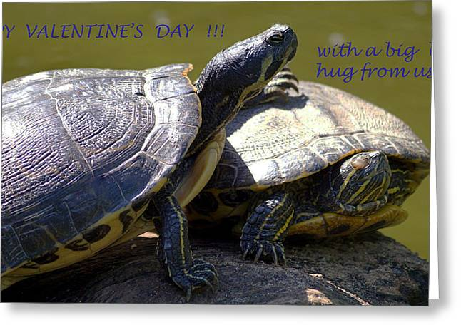 Best Sellers -  - Wildlife Celebration Greeting Cards - Valentine Hugs Greeting Card by Angelika Sauer
