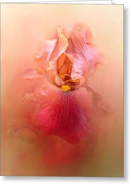 Valentine Iris Greeting Card by Jai Johnson